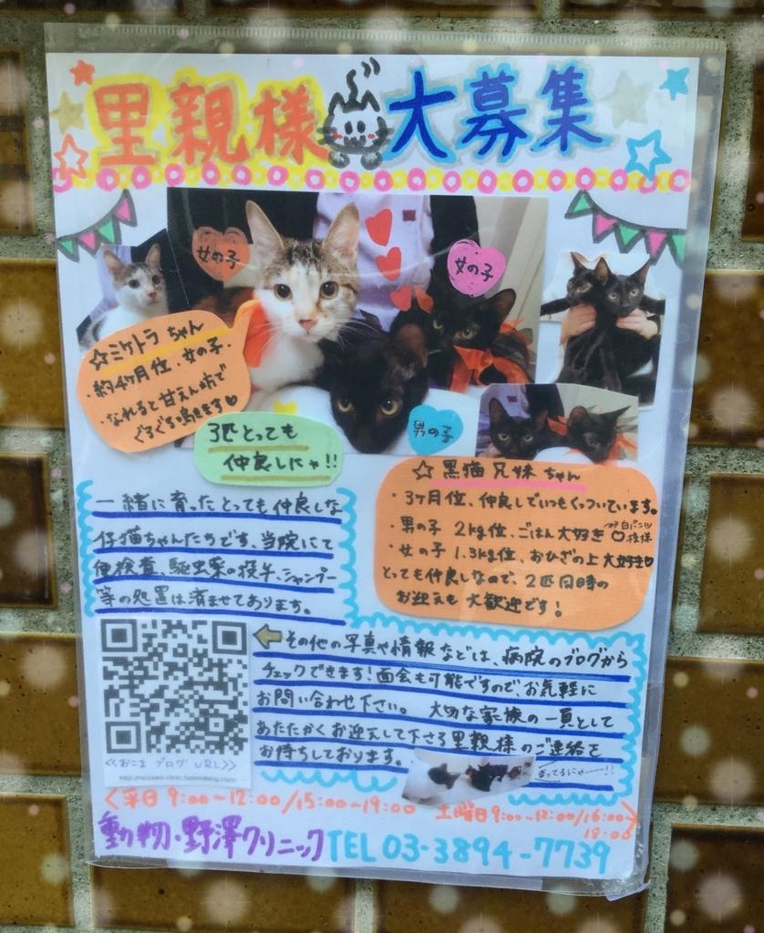 f:id:nozawa_clinic:20171026105532j:plain