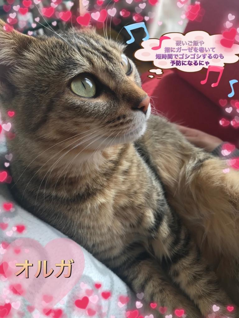 f:id:nozawa_clinic:20171212153208j:plain