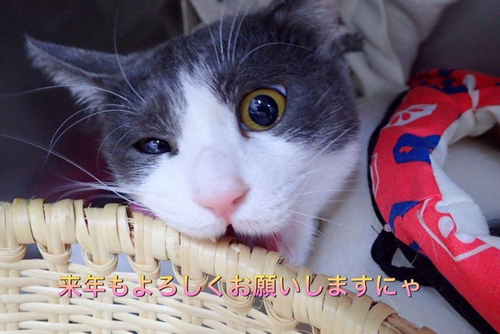 f:id:nozawa_clinic:20171230180733j:plain