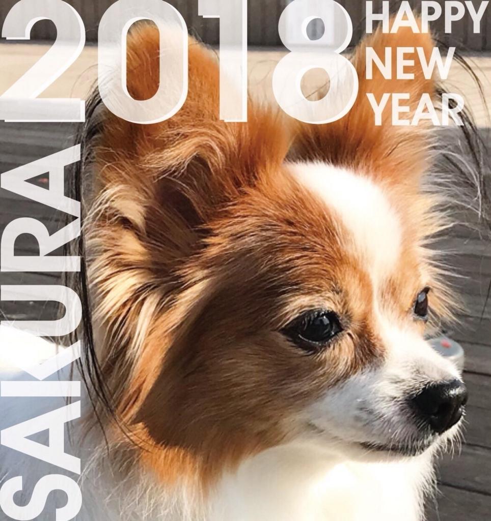f:id:nozawa_clinic:20180109171519j:plain