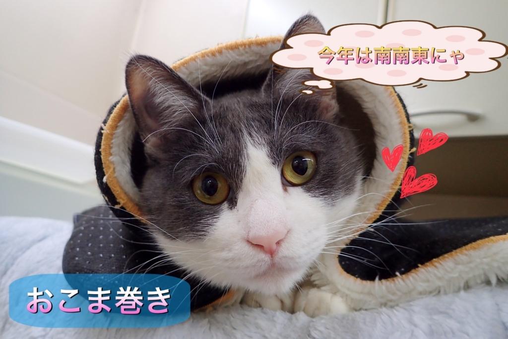 f:id:nozawa_clinic:20180202181331j:plain