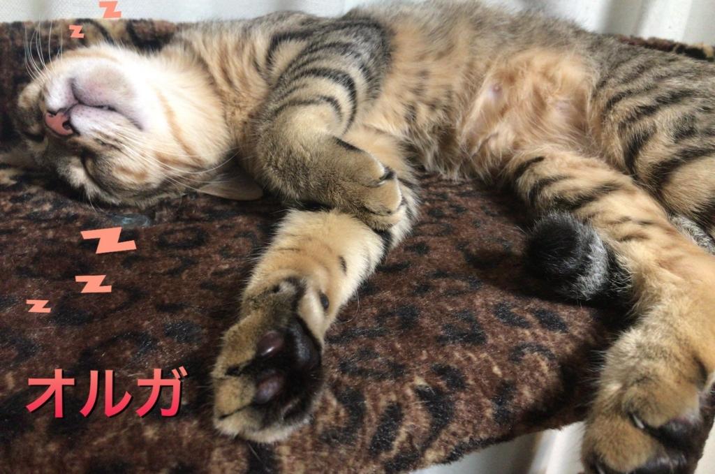 f:id:nozawa_clinic:20180202182632j:plain