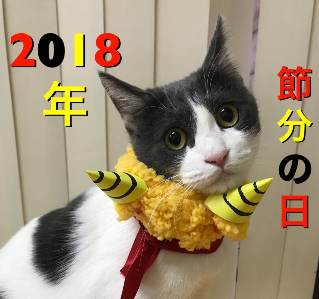 f:id:nozawa_clinic:20180202183917j:plain