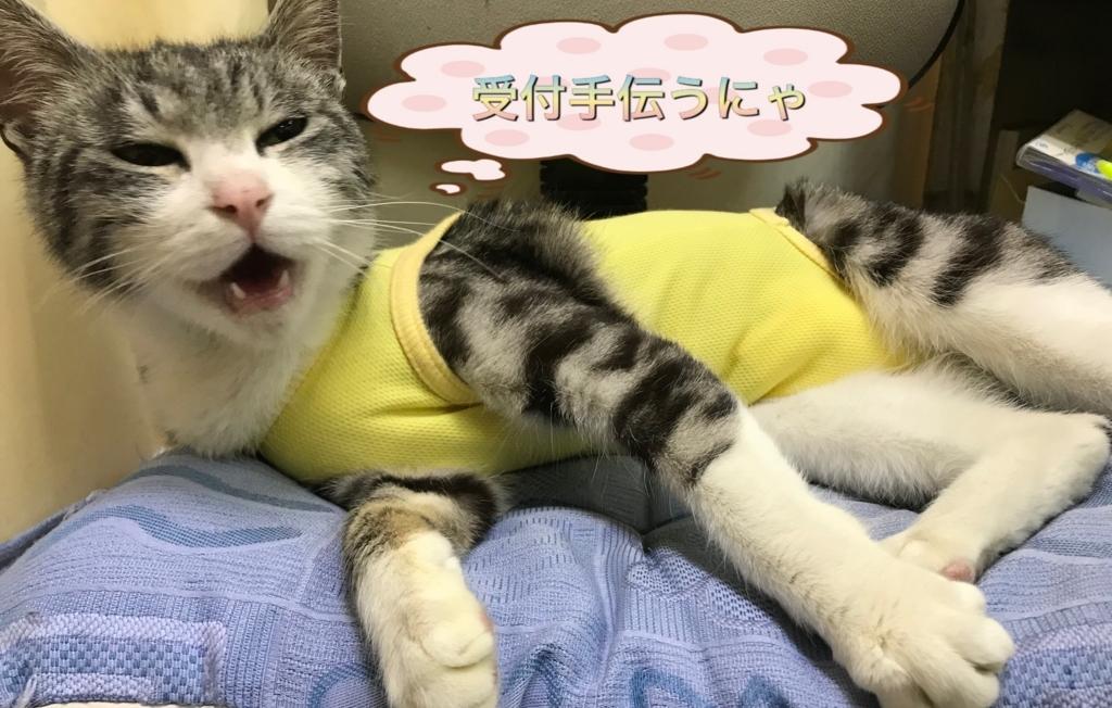 f:id:nozawa_clinic:20180224102020j:plain