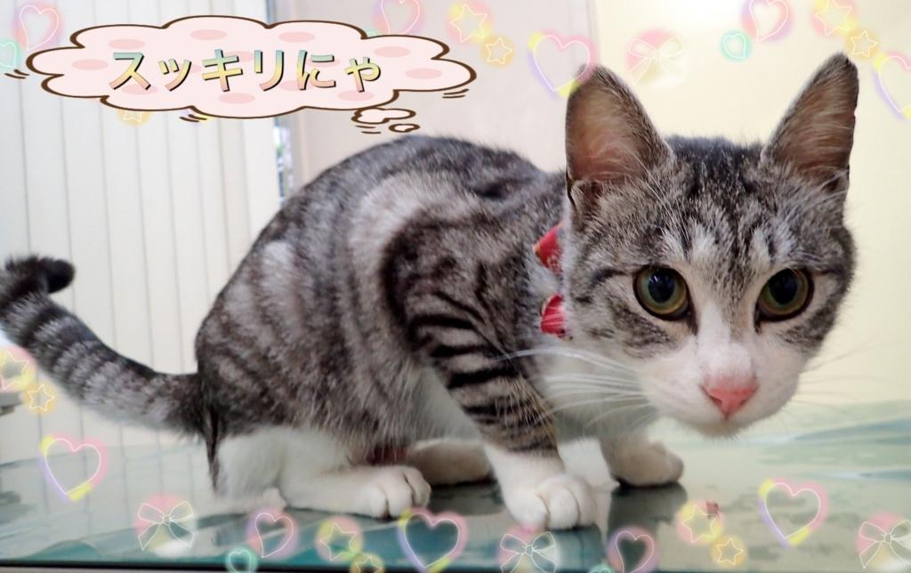 f:id:nozawa_clinic:20180224165206j:plain