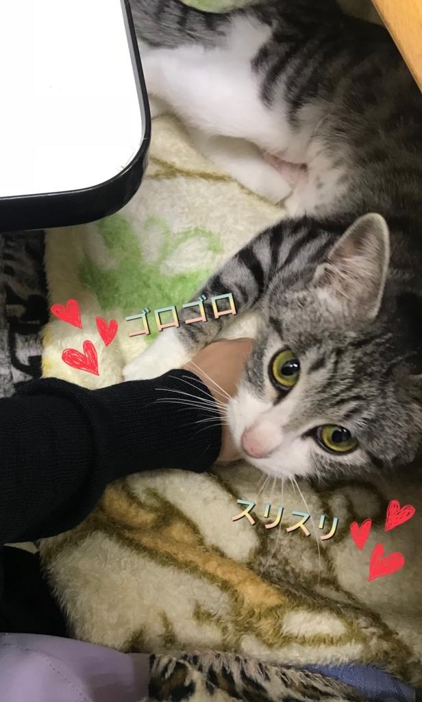 f:id:nozawa_clinic:20180224173217j:plain