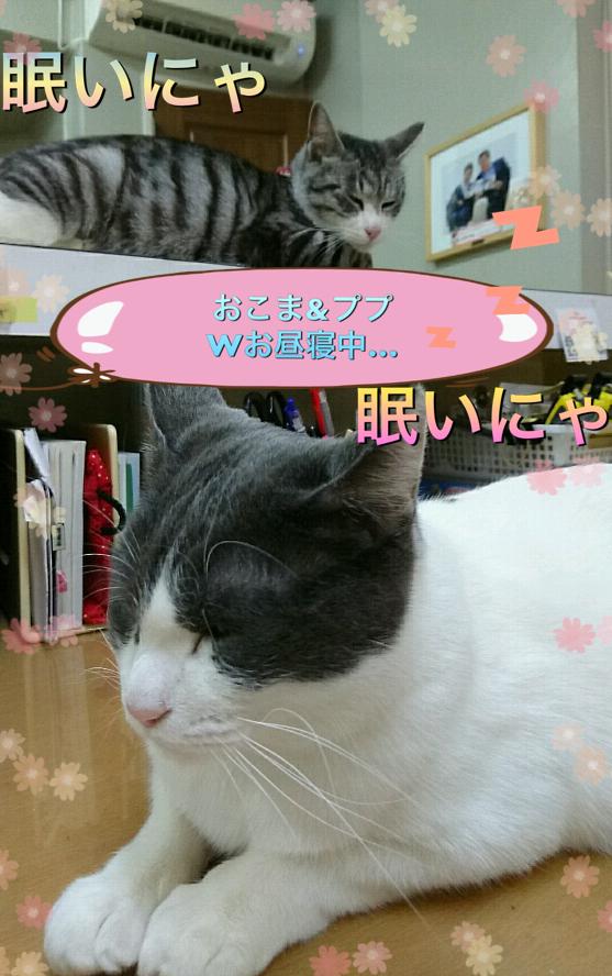 f:id:nozawa_clinic:20180315154821j:plain