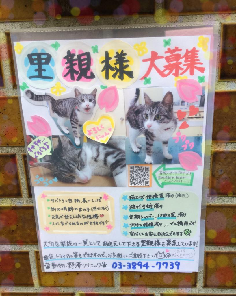 f:id:nozawa_clinic:20180315160003j:plain