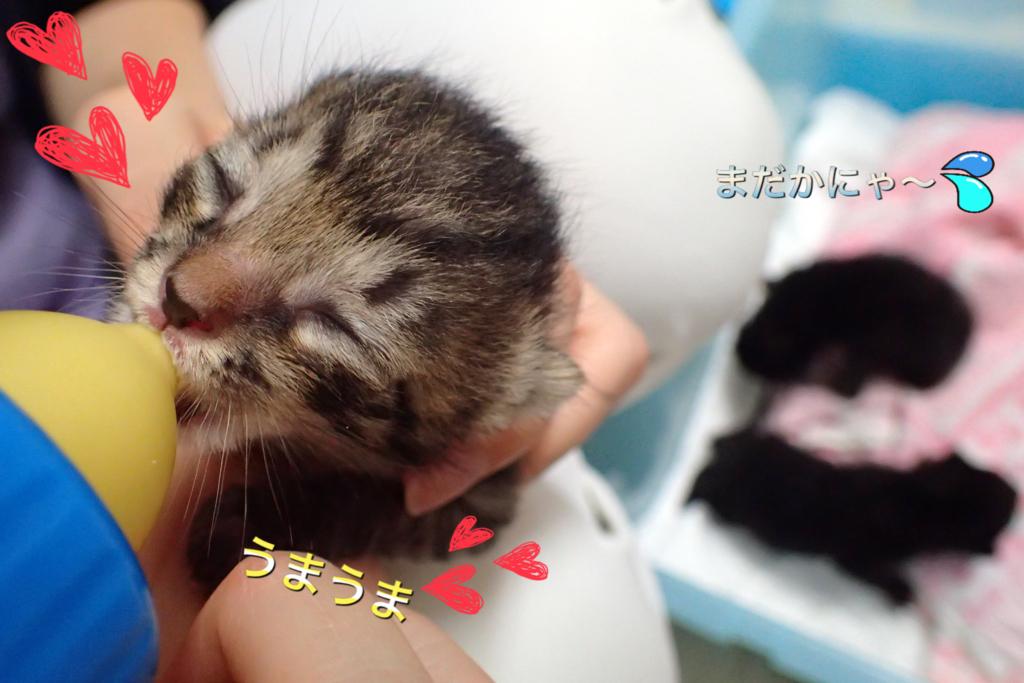 f:id:nozawa_clinic:20180426113847j:plain