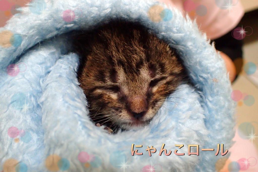 f:id:nozawa_clinic:20180427114916j:plain