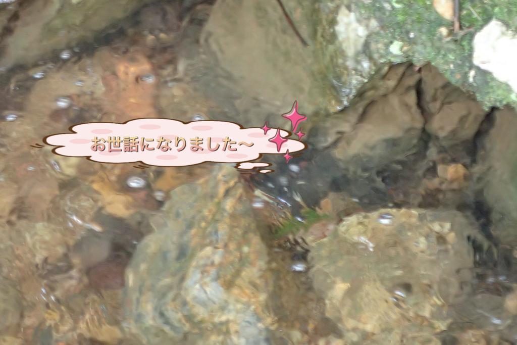 f:id:nozawa_clinic:20180509114340j:plain