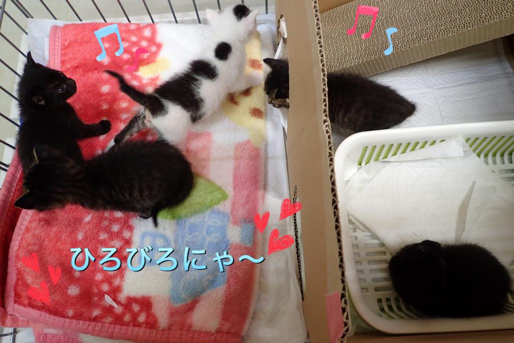 f:id:nozawa_clinic:20180517160148j:plain