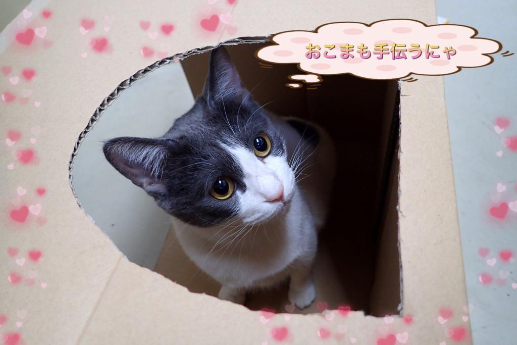 f:id:nozawa_clinic:20180517171437j:plain