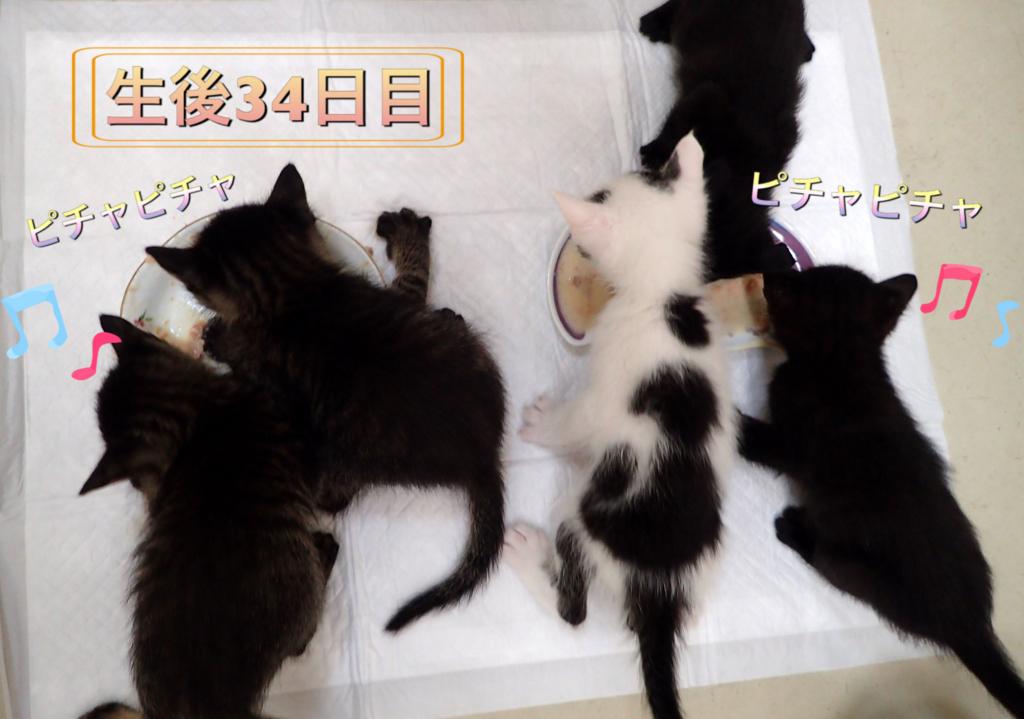 f:id:nozawa_clinic:20180531113753j:plain