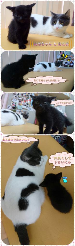 f:id:nozawa_clinic:20180601101117j:plain
