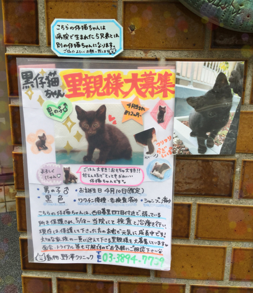f:id:nozawa_clinic:20180612162241j:plain
