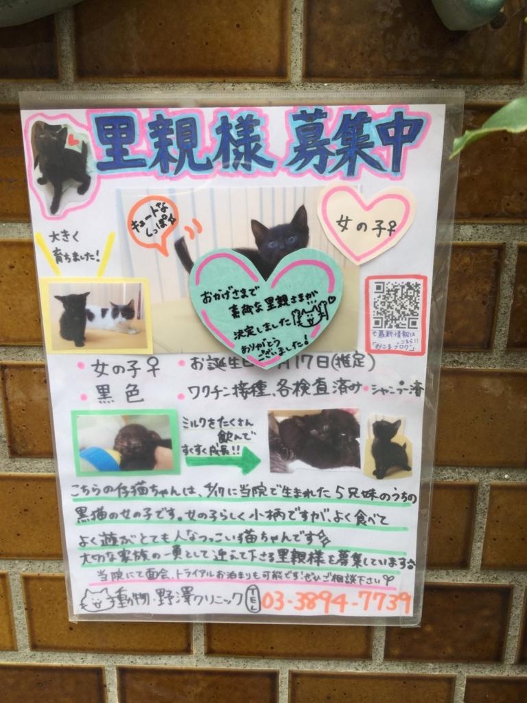 f:id:nozawa_clinic:20180612182357j:plain