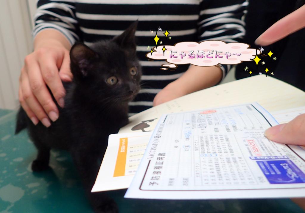 f:id:nozawa_clinic:20180713112237j:plain