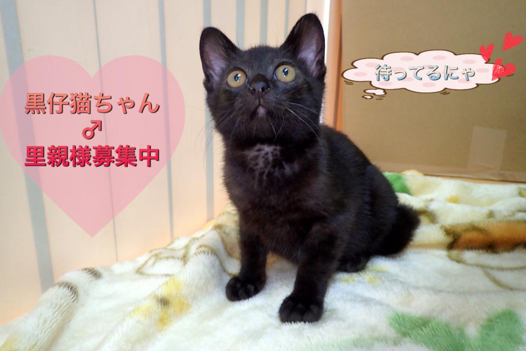 f:id:nozawa_clinic:20180713162958j:plain