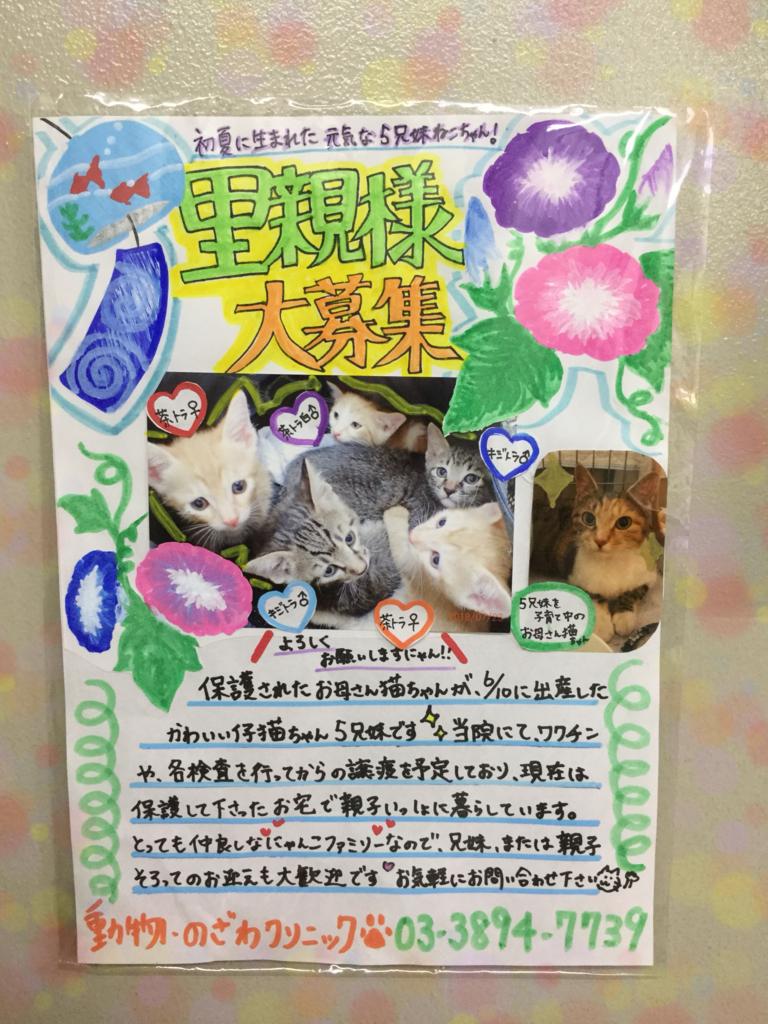 f:id:nozawa_clinic:20180725170640j:plain