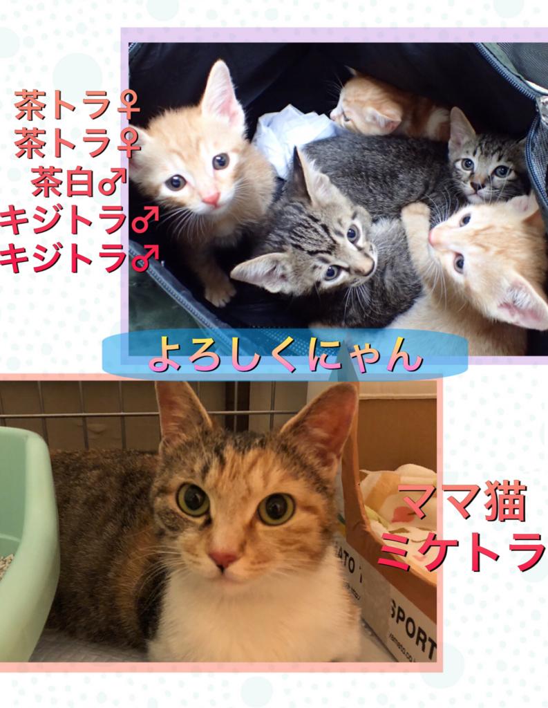 f:id:nozawa_clinic:20180725172400j:plain