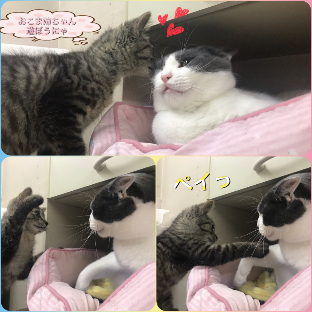 f:id:nozawa_clinic:20180725180100j:plain
