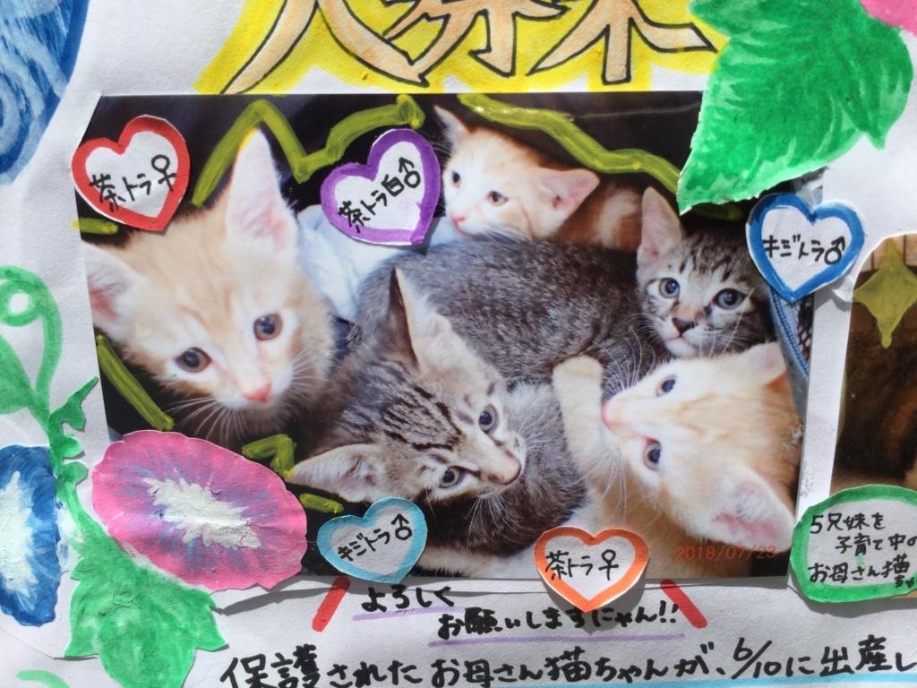 f:id:nozawa_clinic:20180731103256j:plain