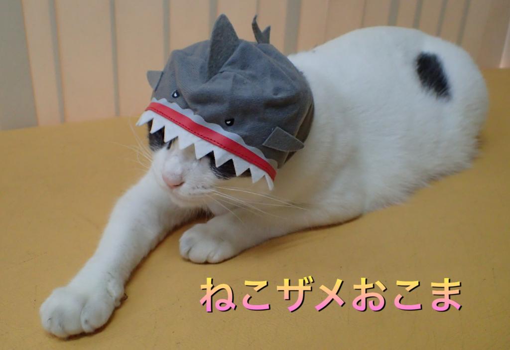 f:id:nozawa_clinic:20180806184609j:plain