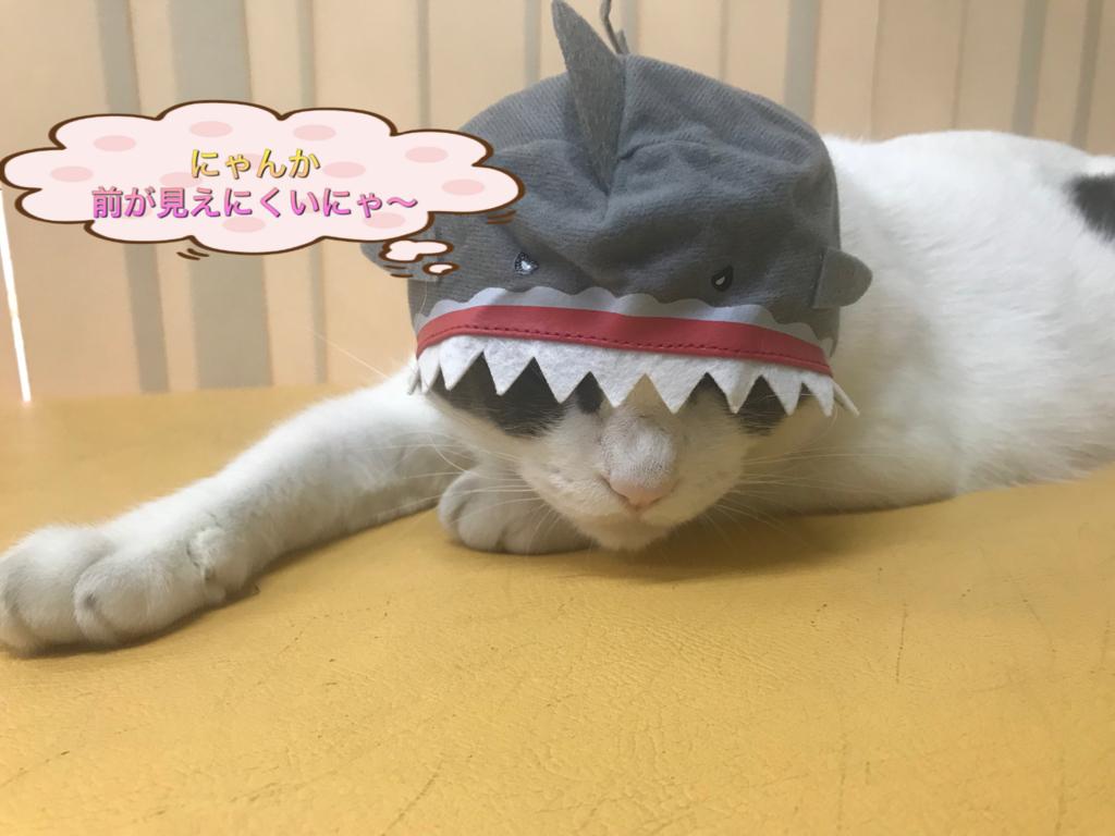 f:id:nozawa_clinic:20180806184901j:plain