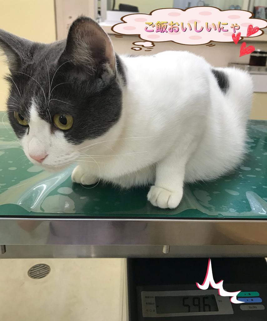 f:id:nozawa_clinic:20180830175756j:plain