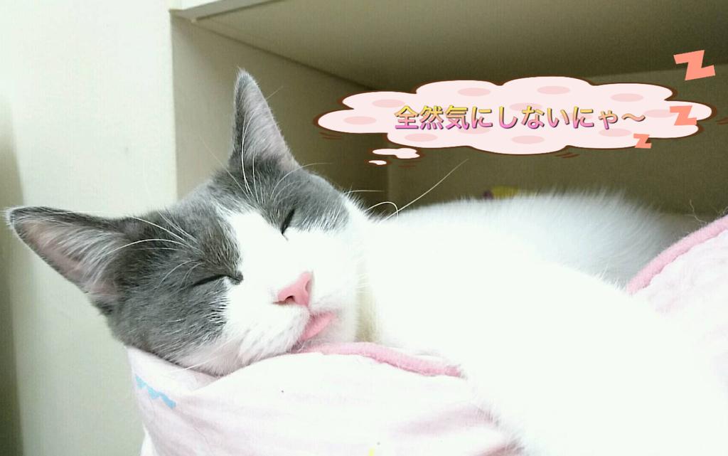 f:id:nozawa_clinic:20180830180336j:plain