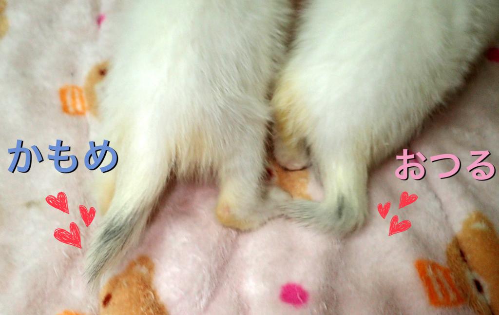 f:id:nozawa_clinic:20181016174006j:plain