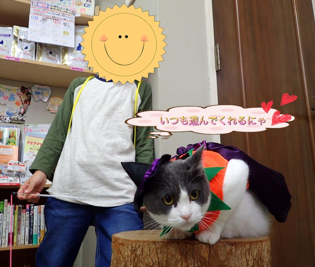 f:id:nozawa_clinic:20181031162820j:plain