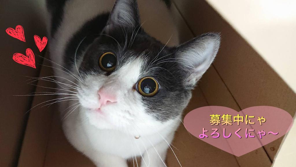 f:id:nozawa_clinic:20181031170330j:plain