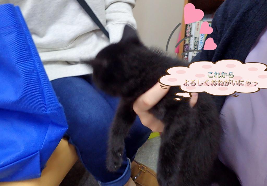 f:id:nozawa_clinic:20181031171500j:plain