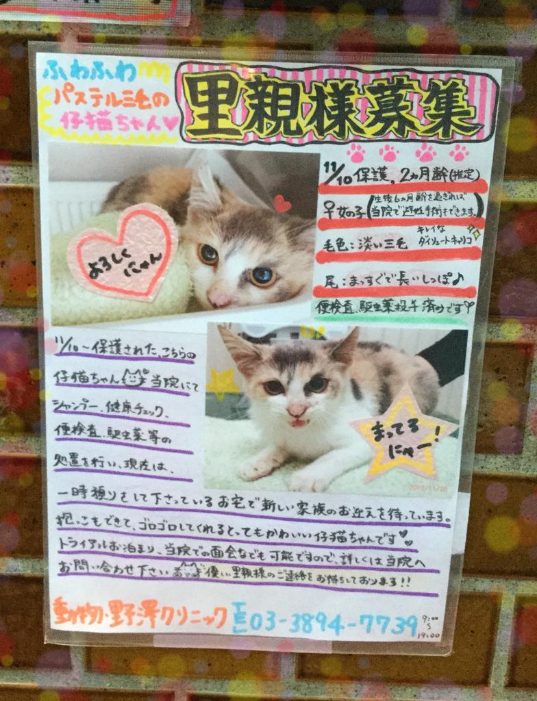 f:id:nozawa_clinic:20181122163943j:plain