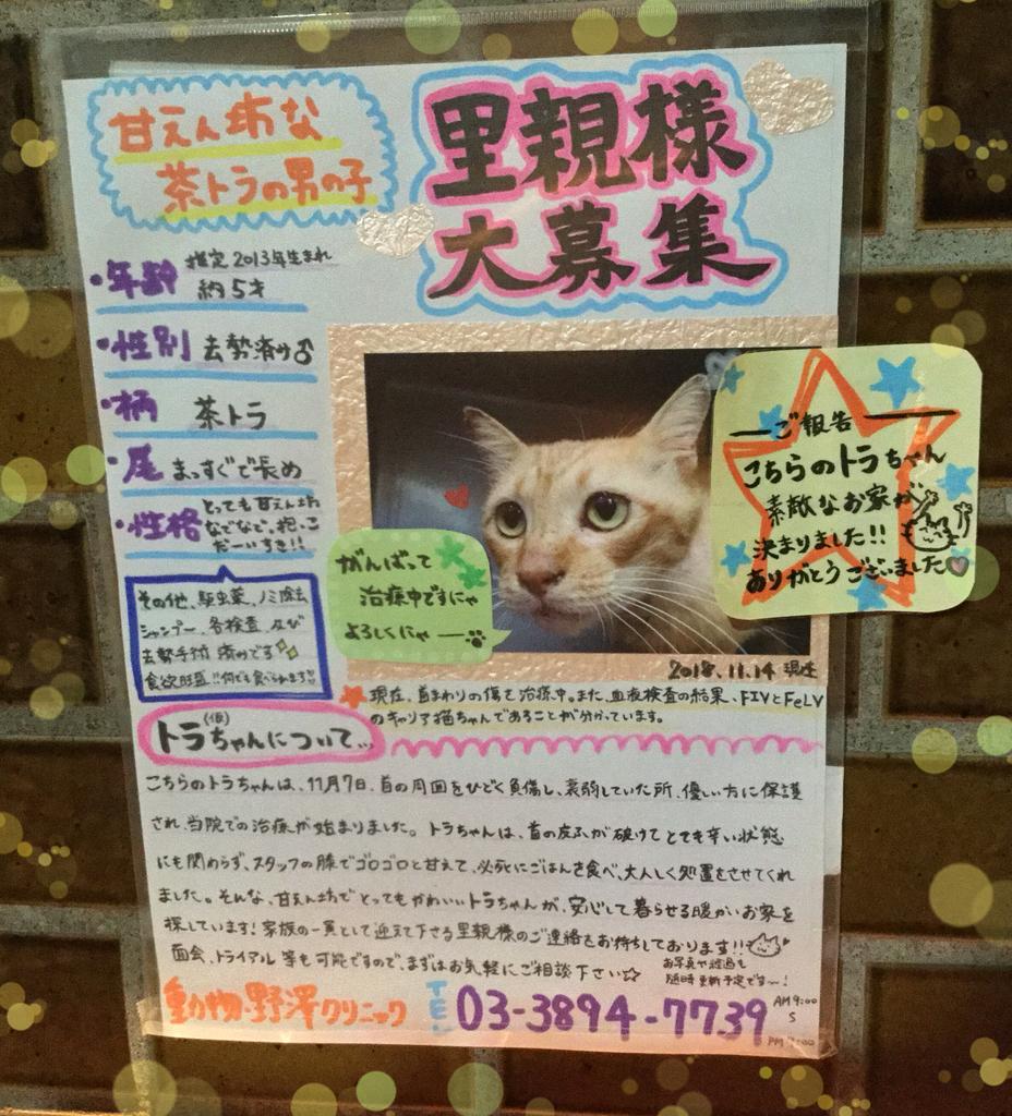 f:id:nozawa_clinic:20181122165322j:plain