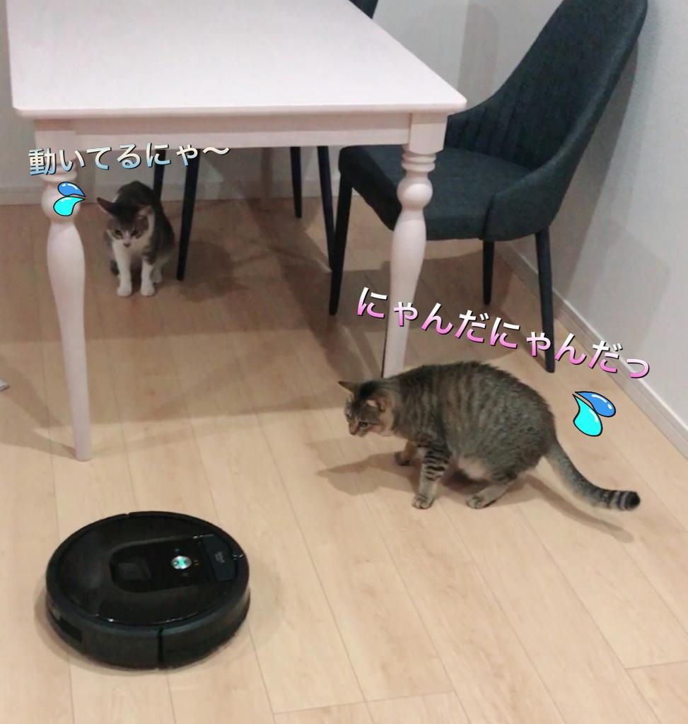 f:id:nozawa_clinic:20181206174732j:plain