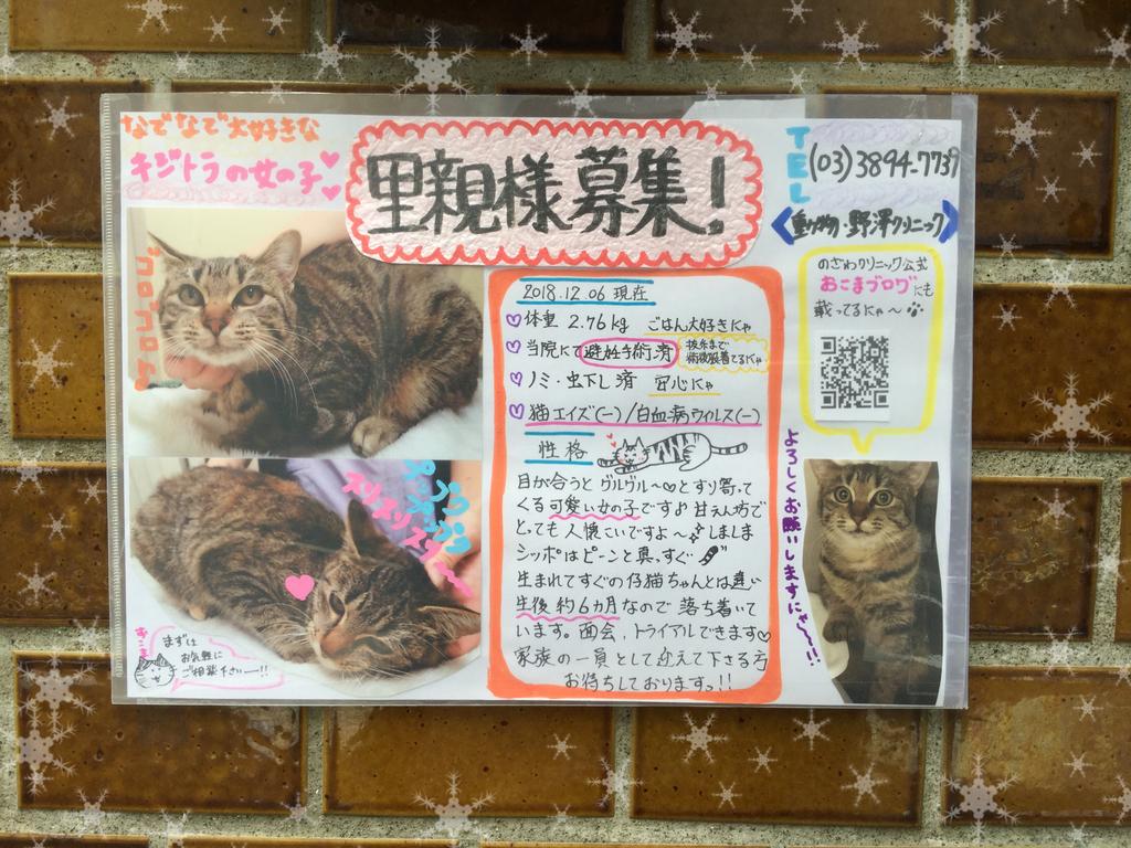 f:id:nozawa_clinic:20181207100232j:plain