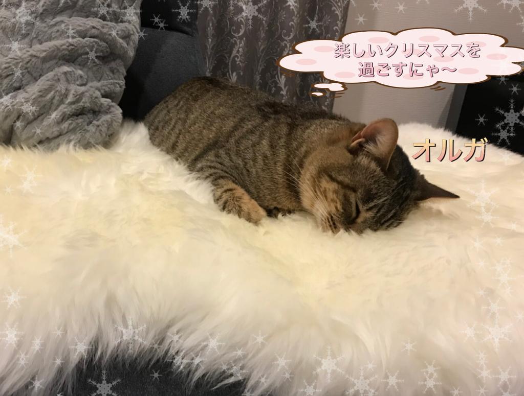 f:id:nozawa_clinic:20181225181414j:plain