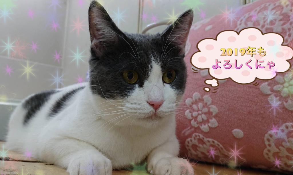 f:id:nozawa_clinic:20181229114155j:plain