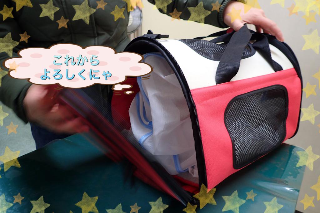 f:id:nozawa_clinic:20181229134921j:plain