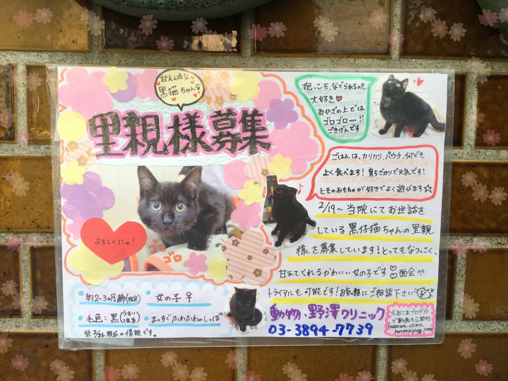 f:id:nozawa_clinic:20190226161524j:plain