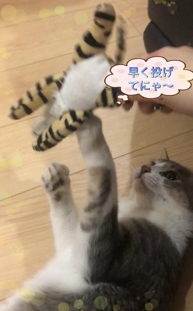 f:id:nozawa_clinic:20190301164419j:plain