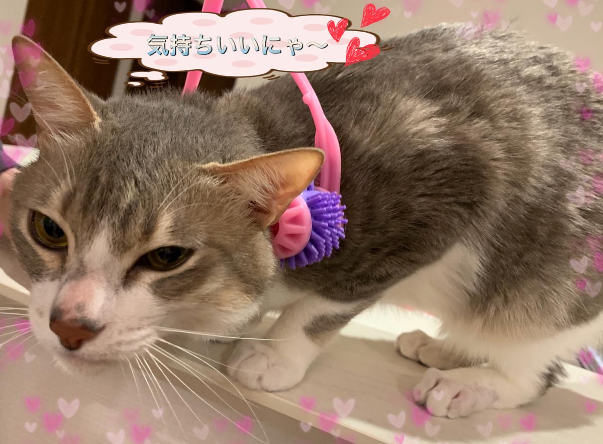 f:id:nozawa_clinic:20190426174319j:plain