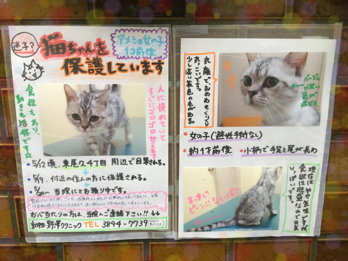 f:id:nozawa_clinic:20190521154206j:plain