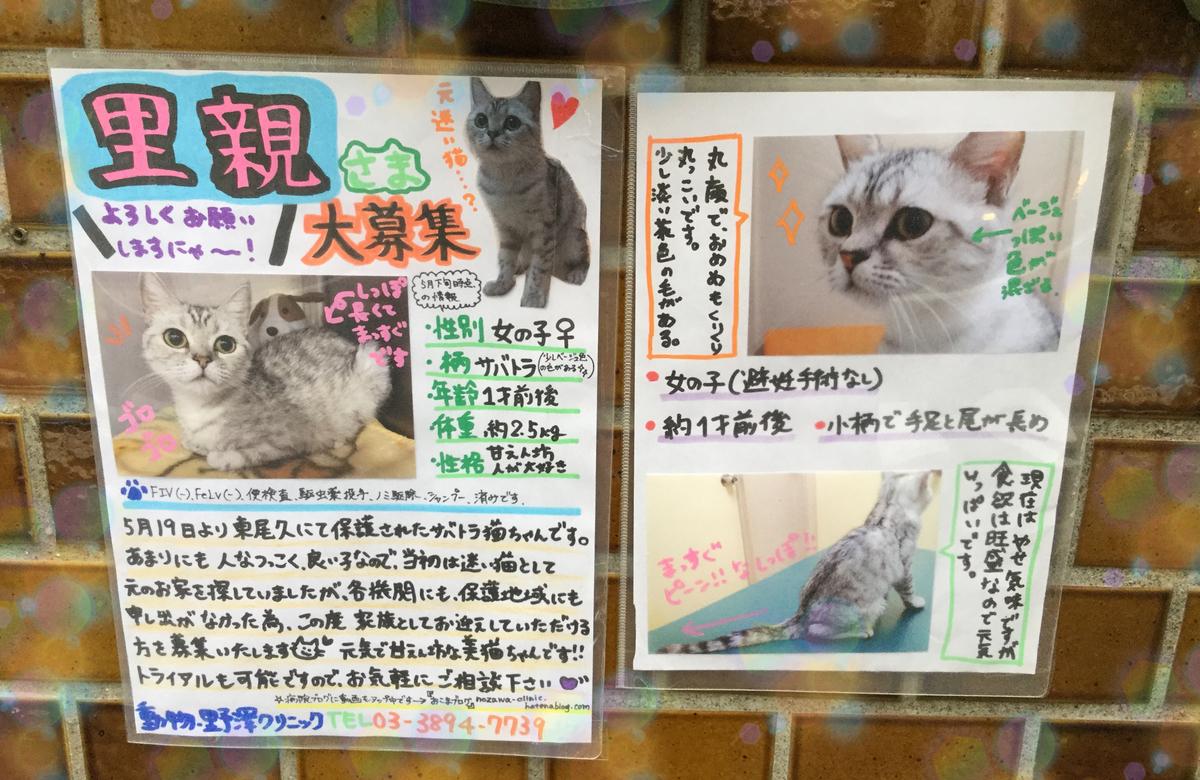 f:id:nozawa_clinic:20190528170459j:plain
