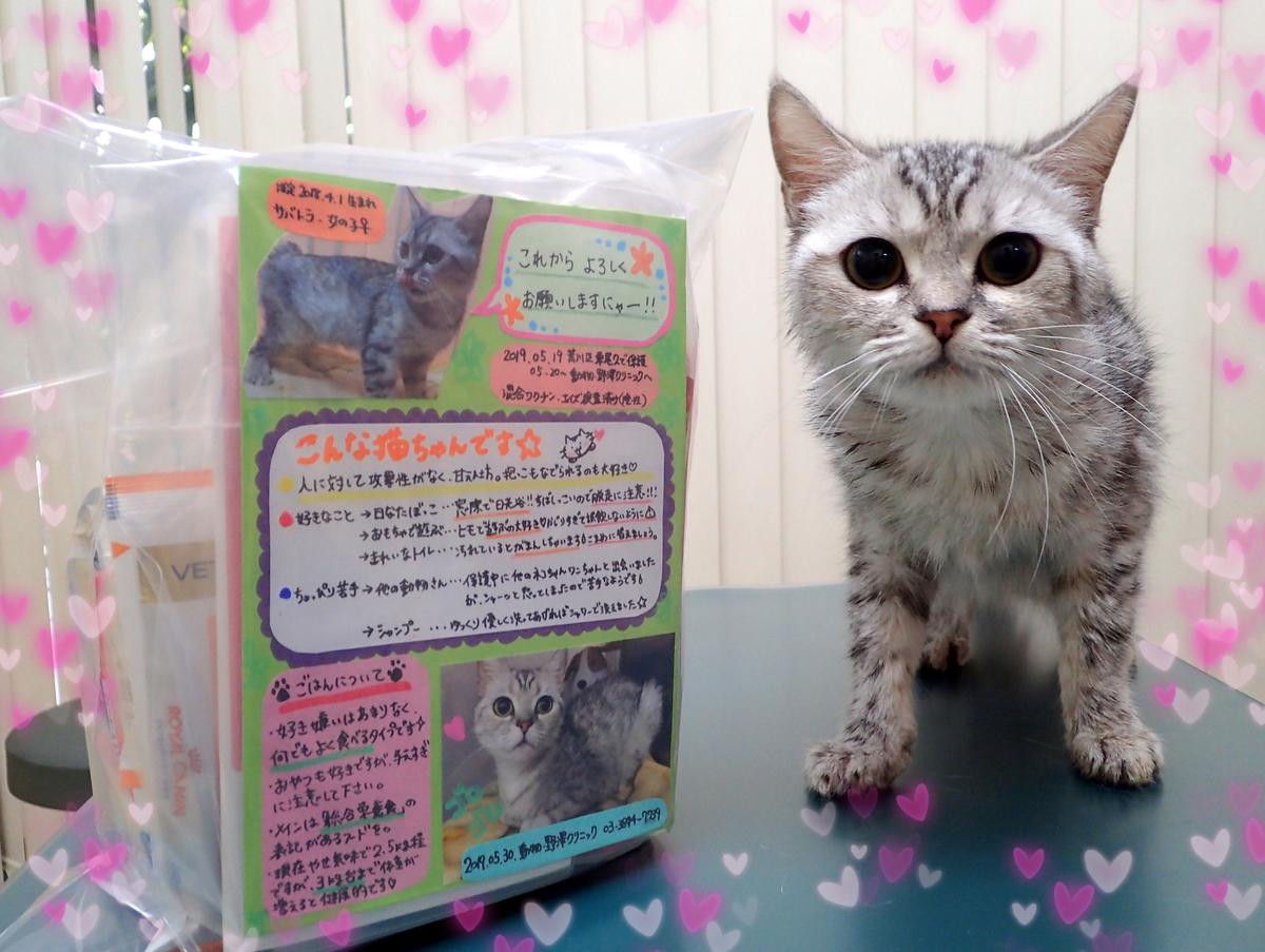 f:id:nozawa_clinic:20190605184157j:plain