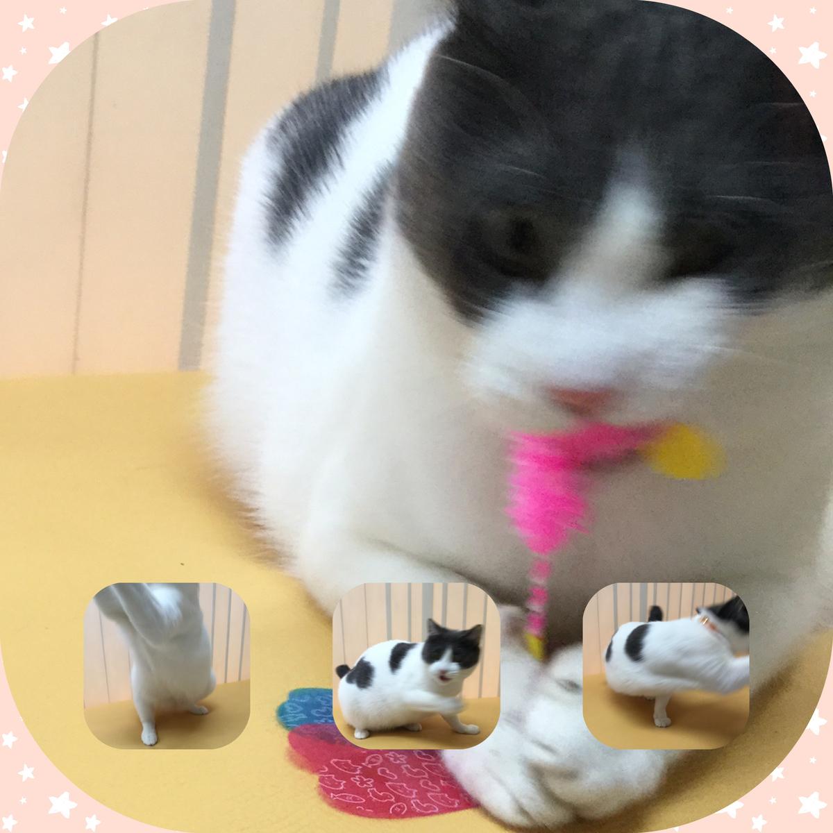 f:id:nozawa_clinic:20190607111400j:plain