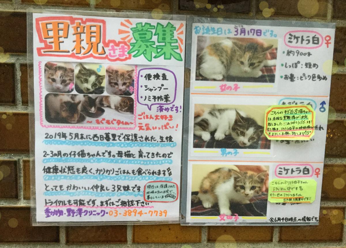 f:id:nozawa_clinic:20190611180336j:plain